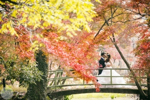A couple kissing on the bridge in Kyoto Botanical garden in Autumn with woman wearing a wedding dress for pre-wedding photo