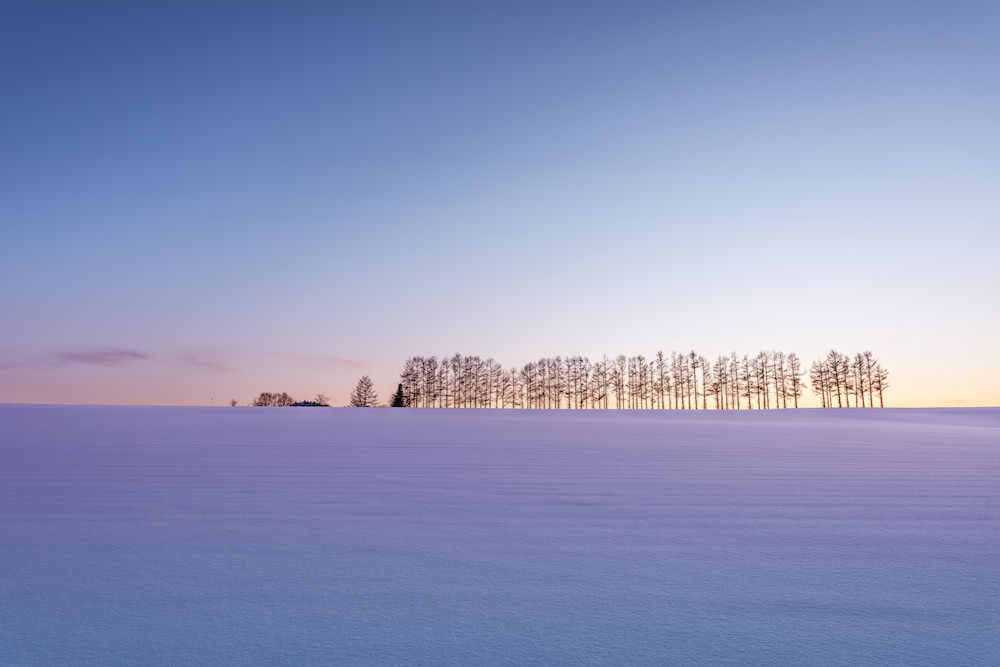 Beautiful calm snow scenery in Hokkaido in winter