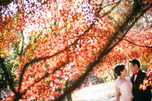A couple smiling at each other for their pre-wedding photo in a beautiful Kyoto botanical garden in Autumn