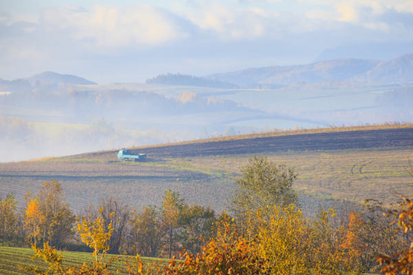 Countryside view of Biei, Hokkaido