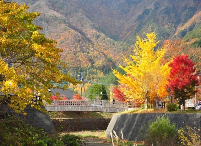 A feeling of fall in Yamanashi