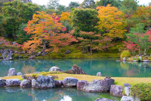 Tenryuji temple in Arashiyama in Autumn
