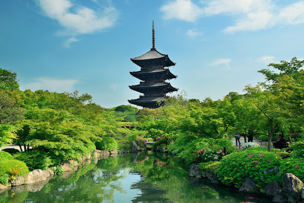 Toji temple in Kyoto during summer time with fresh green trees
