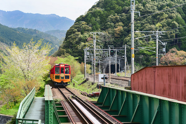 Torokko train in Sagano Arashiyama, a great way to immerse yourself in beautiful nature in Kyoto