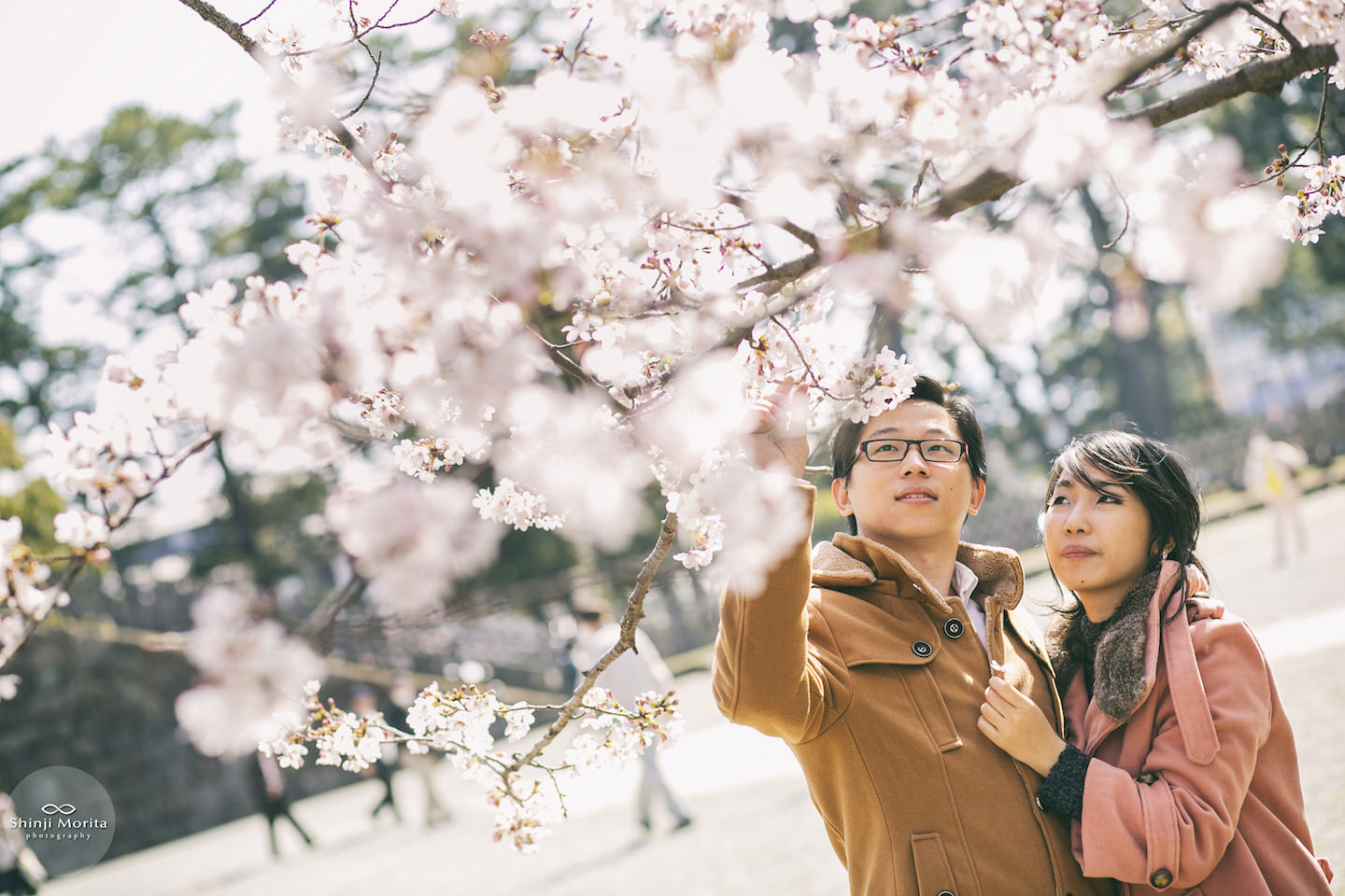 A couple enjoying cherry blossom in Hakone, Japan