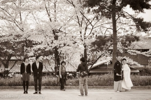 A couple posing in front of a camera in front of cherry blossoms