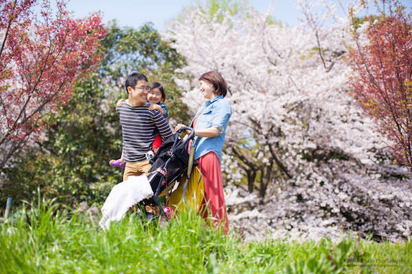 A family enjoying a walk during cherry blossom season for vacation photo