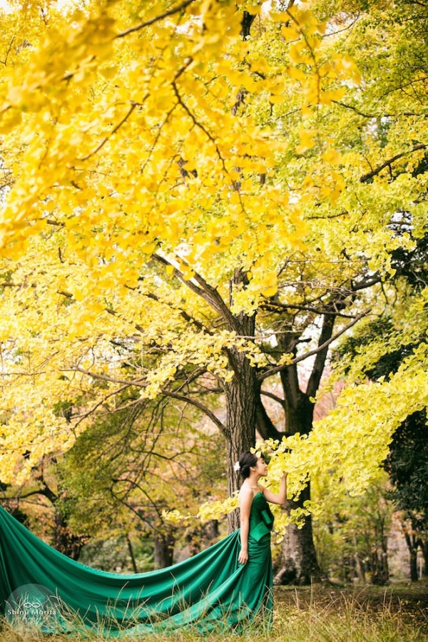 A lady in a beautiful green dress in Autumn in Kyoto botanical garden