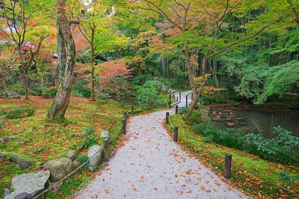 Enkoji garden during Autumn