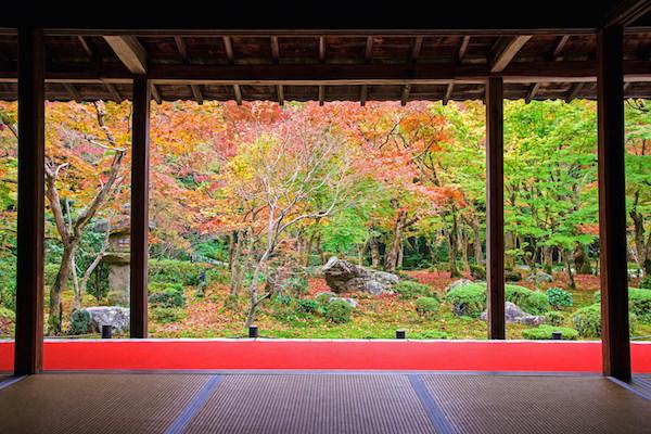 Beautiful scenery during autumn in Enkoji, Kyoto