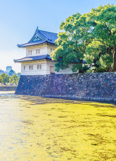 Imperial palace in Autumn with yellow Ginkyo leaves in the water