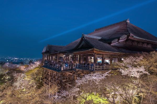 Cherry blossom surrounding Kiyomizudera temple in Kyoto