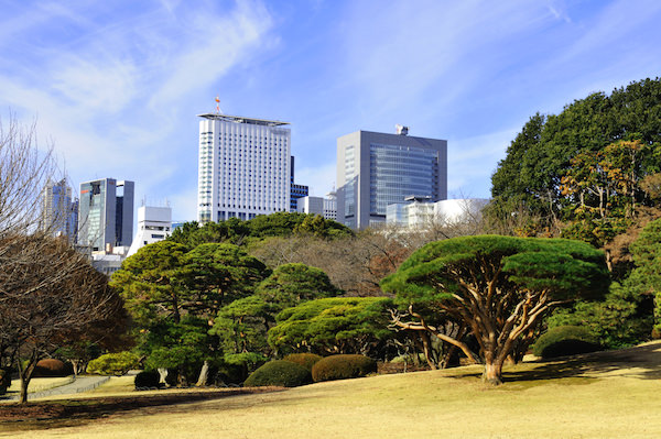 Shinjuku gyoen with buildings in the background
