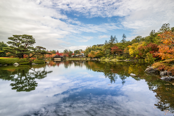 Showa memorial park during Autumn