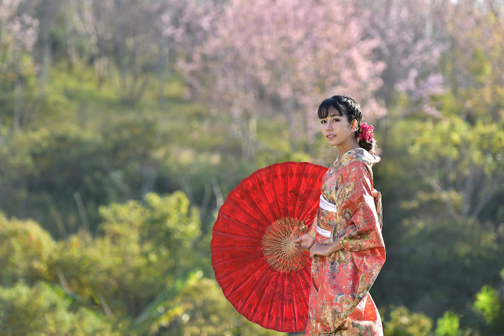 A girl wearing kimono with umbrella with cherry blossom in the back ground