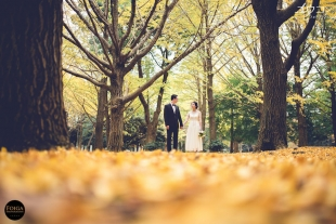 Pre-wedding photo by Daniel during Autumn with yellow ginkyo leaves in Daniel Ng Yew Kong