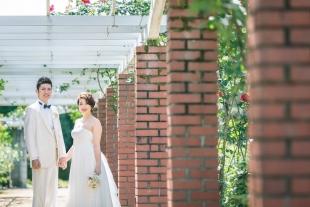 Pre-wedding photo in rose garden