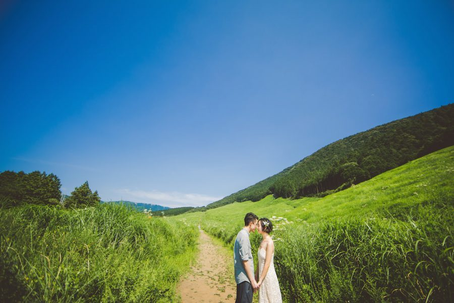 A couple looking at each other romantically in silver grass field in Hakone during pre-wedding photo with CHiKA