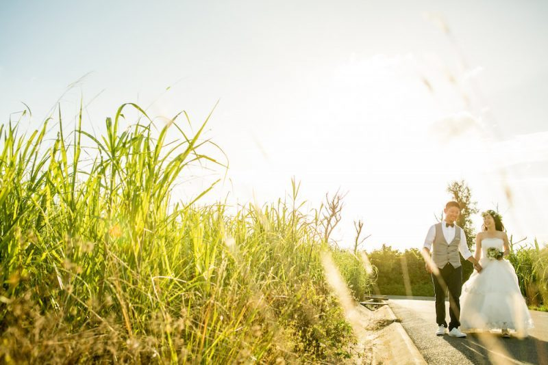 A couple walking along the corn field laughing during pre-wedding photo with Yoshiaki Ida