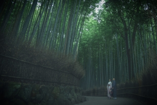 Pre-wedding photo of a couple dressed in kimono, posing dressed in kimono in mystical bamboo forest in Arashiyama, Kyoto