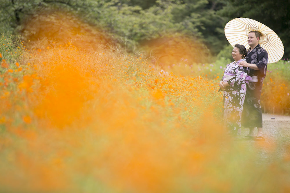 Pre-wedding photo at Hamarikyu garden in Tokyo with a couple wearing kimono surrounded by cosmos flowers