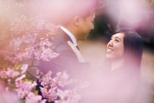 Cherry_Blossom_Koki_2
