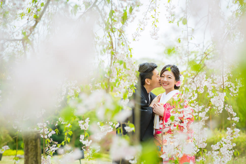 Pre-wedding Kyoto Cherry Blossom