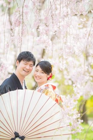 Pre-wedding Kyoto Cherry Blossom Kimono