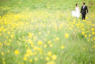 pre-wedding 010
