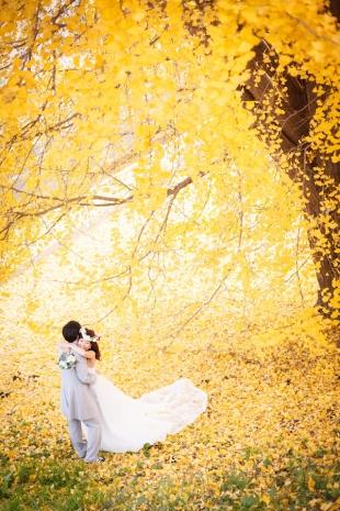 pre-wedding 035