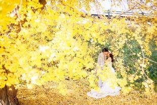 pre-wedding 036