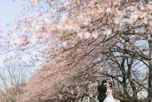 pre-wedding 232