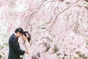 pre-wedding 243