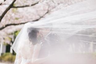 pre-wedding 251