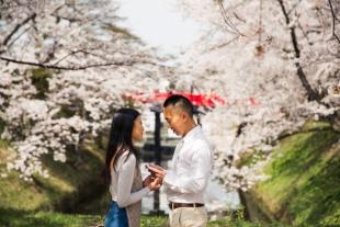 kokorography_vacationphoto_cherryblossoms_japan_koki_002